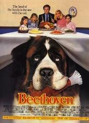 Locandina del film Beethoven