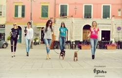 chic4dog1